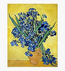 Vincent van Gogh Irises Photographic Print