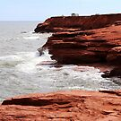 Cliffs of Cavendish PEI  by TerrillWelch