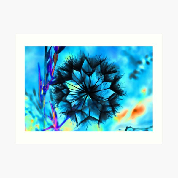 Geodesic Anemone Art Print