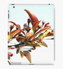 150 Watt iPad Case/Skin