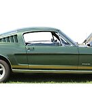 Side on Mustang by Vicki Spindler (VHS Photography)