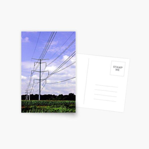 Lines Postcard