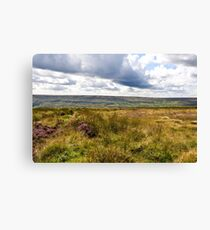 Wild country Canvas Print