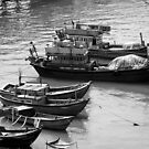 Fishing Boats in Nha Trang, Vietnam  by Lucinda Walter