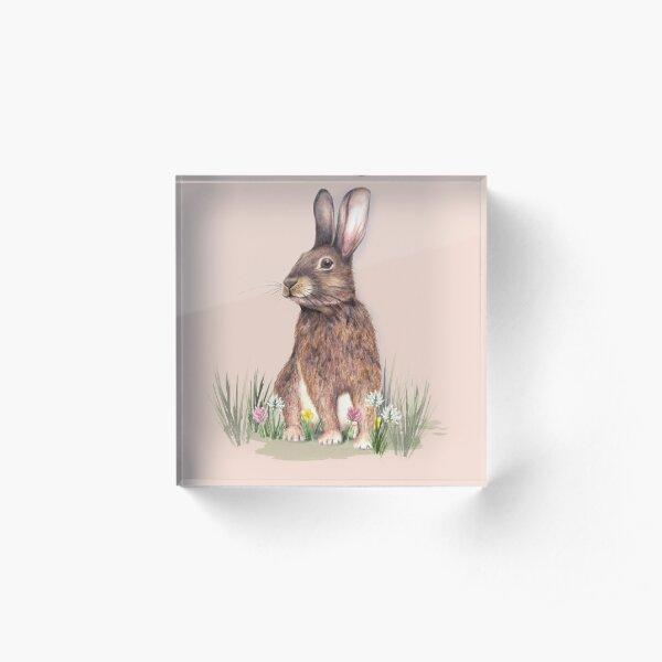 I love Rabbits Acrylic Block