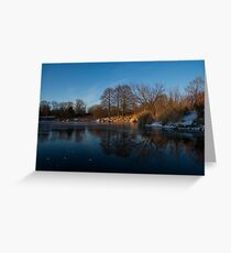 Blue Serenity - Early Morning at a Little Pond off Lake Ontario in Toronto Greeting Card