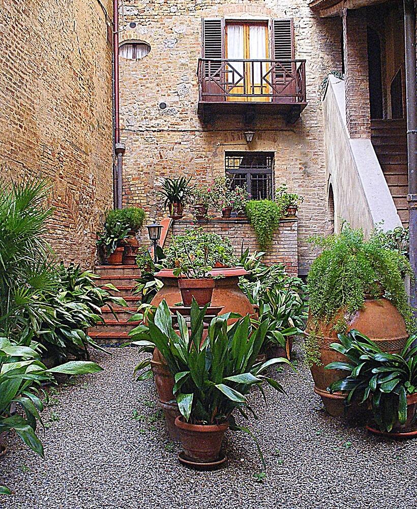 Ferns in a shaded courtyard. by Fara