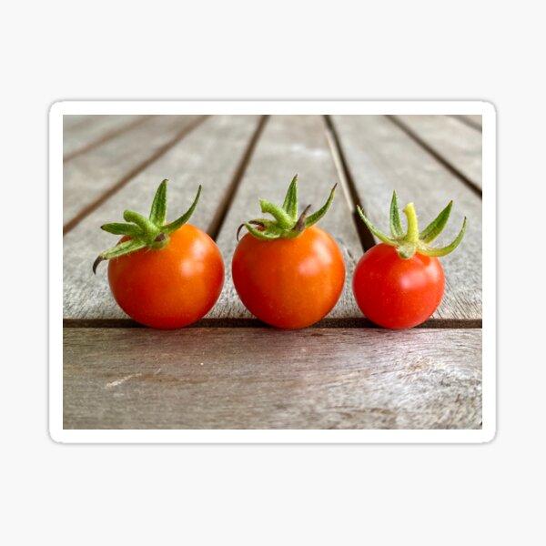 Tiny Tomatoes 2 Sticker