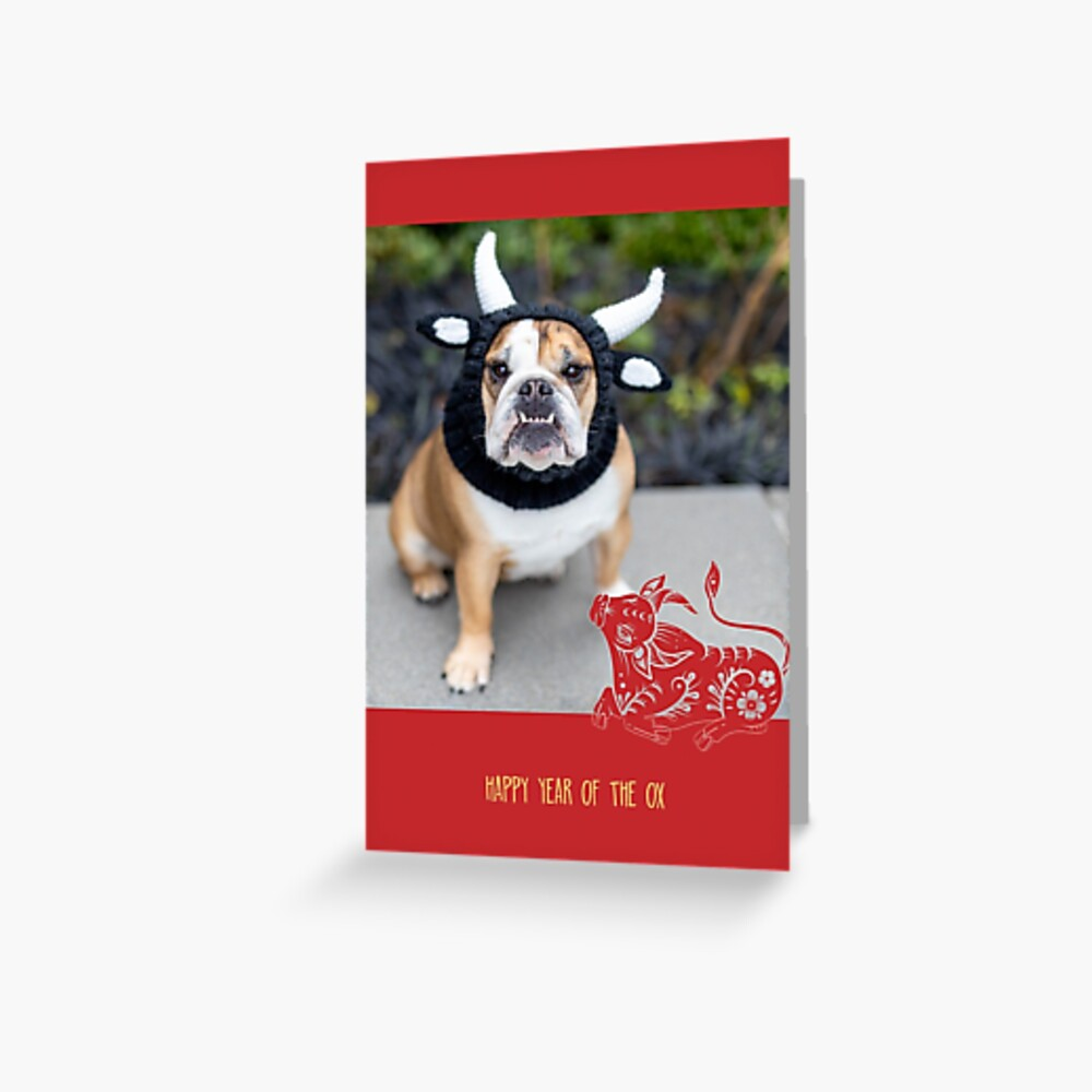 Year of the Ox, red Greeting Card