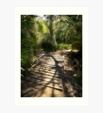 The Journey Along the Path Comes with Light & Shadows Art Print