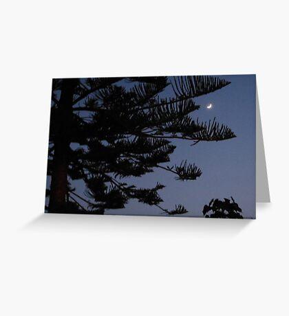 Moonlight Pine Greeting Card