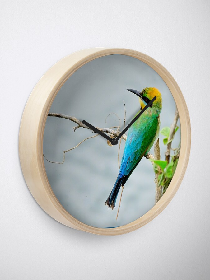 Alternate view of Rainbow Bee-eater 'Patiently Waiting' Clock