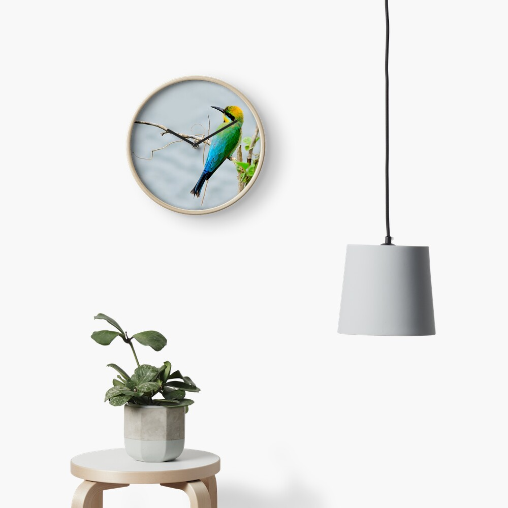 Rainbow Bee-eater 'Patiently Waiting' Clock