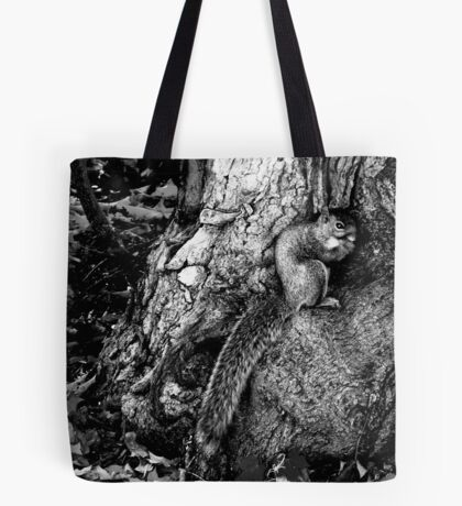 squirrel and the tree king Tote Bag