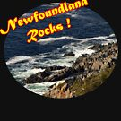 Newfoundland Rocks by Stan Wojtaszek
