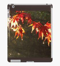 Acer Autumn Leaves iPad Case/Skin