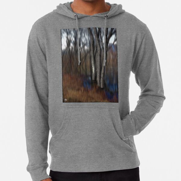 Spring Colors in a Floodplain Forest Lightweight Hoodie