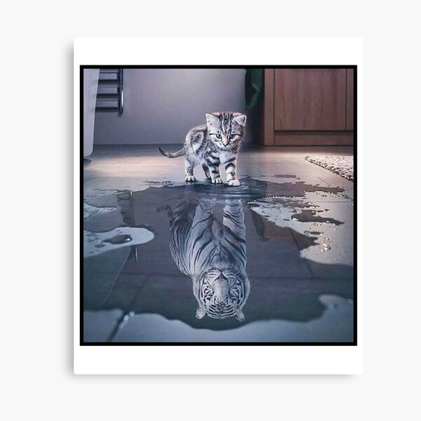 Cat wants to be a tiger ! Canvas Print