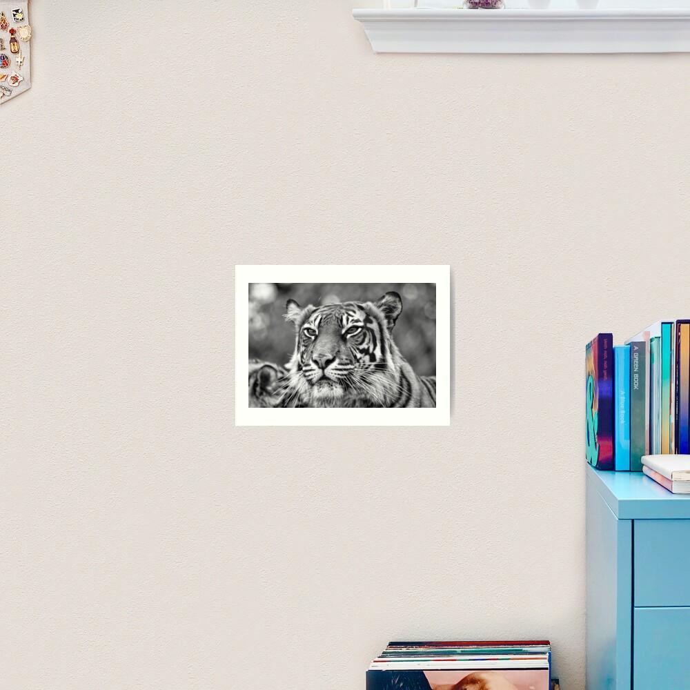 Watching you  Art Print