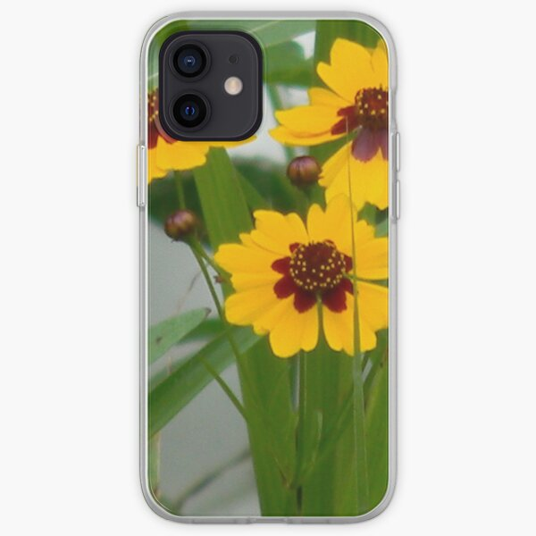 Plains Coreopsis With Buds iPhone Soft Case