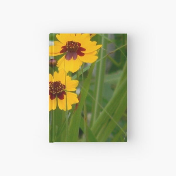 Plains Coreopsis With Buds Hardcover Journal
