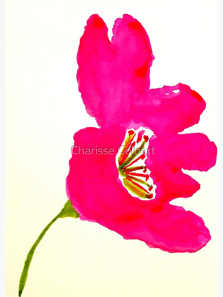 Fuchsia Flower by charissecolbert