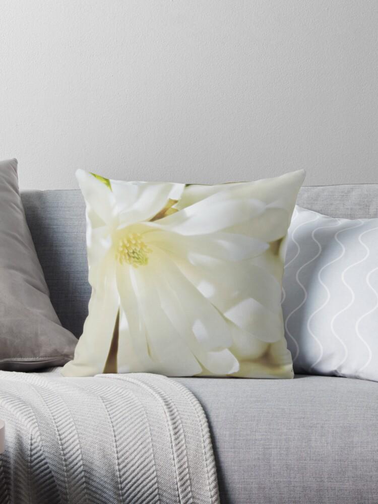 Magnolienblüte von Kathleen Daley