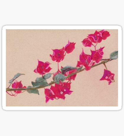 Bougainvillea Floral Design Sticker