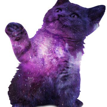 Galaxy Cat v1 by FusionsStudio
