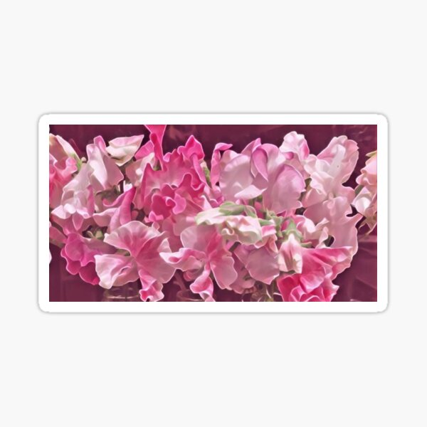 Sweet pea Delight ... A soft pink dream of florals   BOTANICALS  Sticker