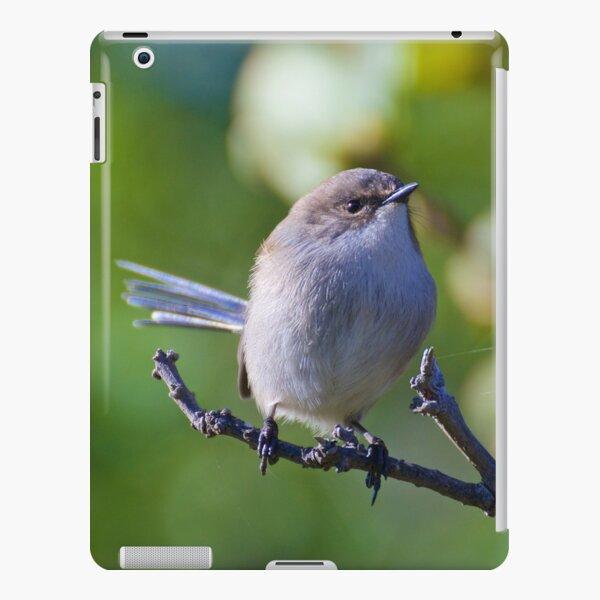 WREN ~ Superb Fairy-Wren VvGiLmLe by David Irwin iPad Snap Case