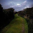 Green Lane by Richard Hamilton-Veal