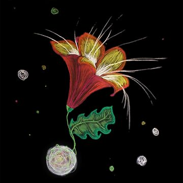 The Red Lily in Space by ivrona