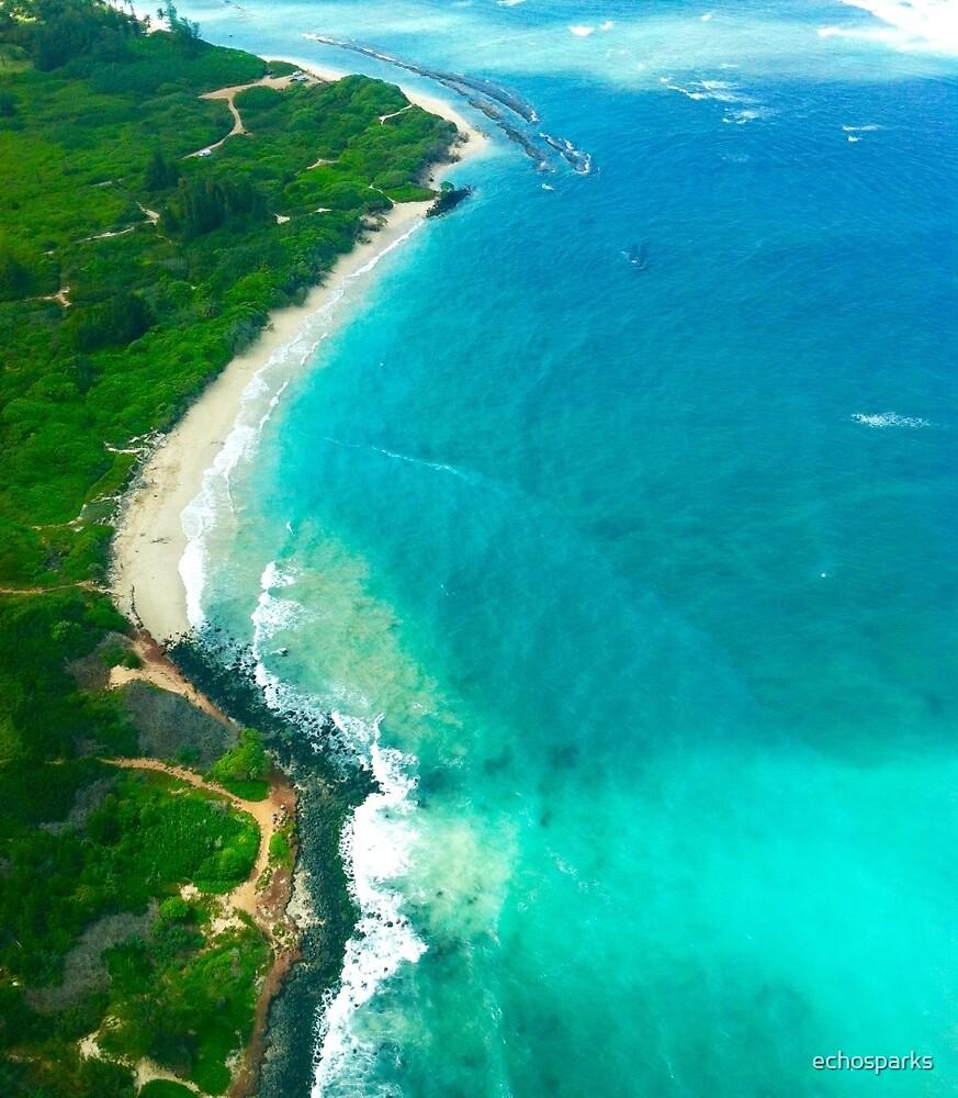Maui Coast by Air by echosparks