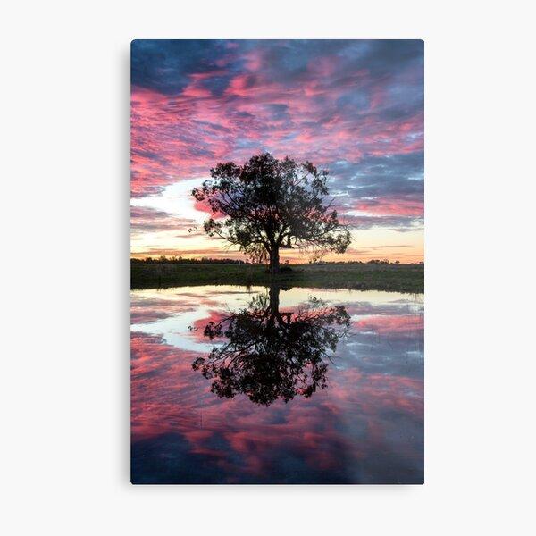 Mirror tree Metal Print