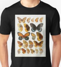 The Macrolepidoptera of the world a systematic account of all the known Butterflies Moths Adalbert Seitz V1 V3 1906 173 Euptoieta Argynnis T-Shirt