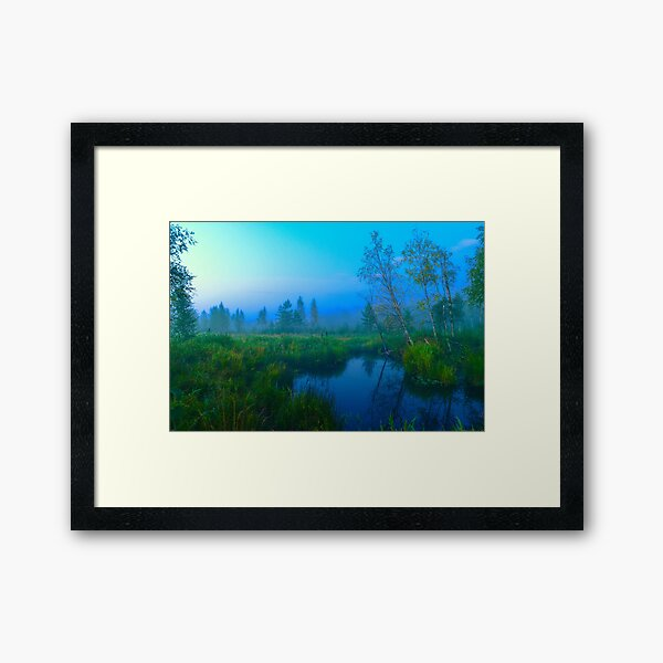 Misty dawn in a wild forest area Framed Art Print
