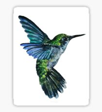 Nature Hummingbird Sticker