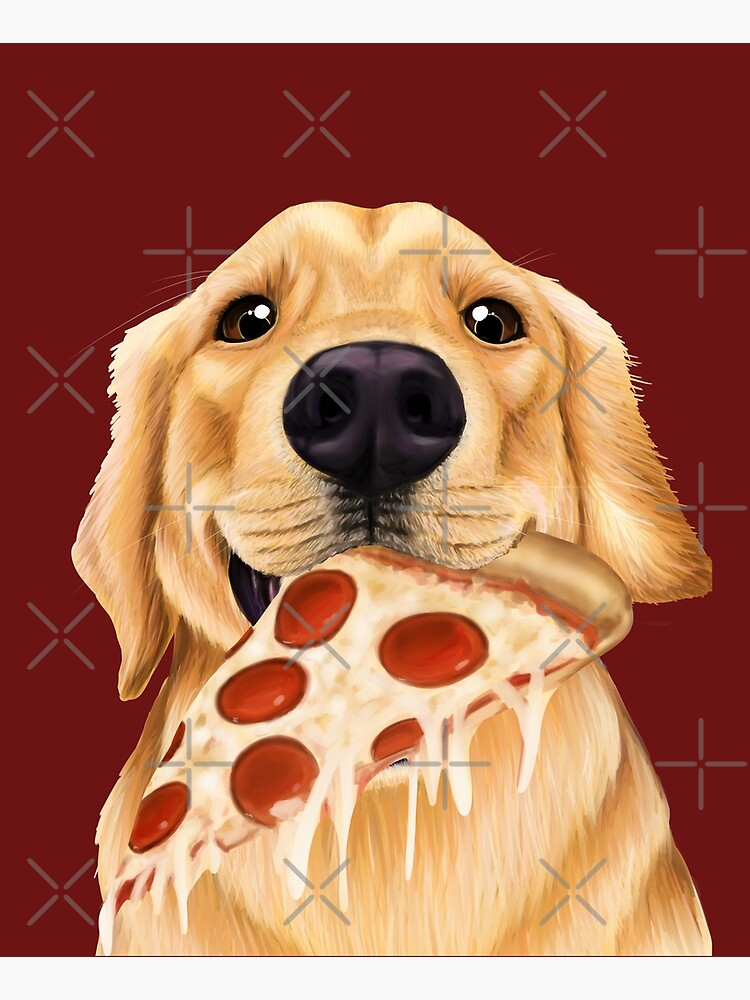 Golden Retriever eating pizza - dog with a slice of pizza by Mehu