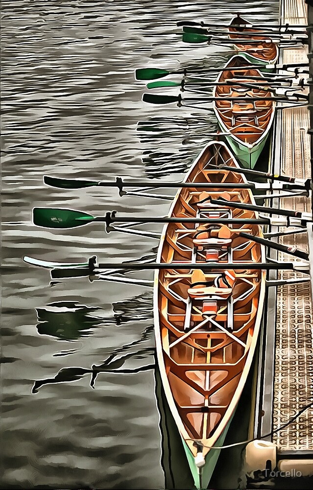 Triple Sculls by Torcello