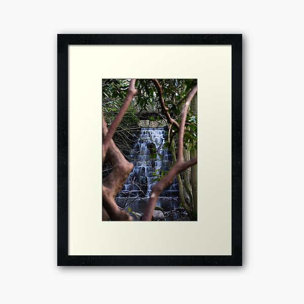 Arrowe Brook Waterfalls and Rhododendron Framed Art Print