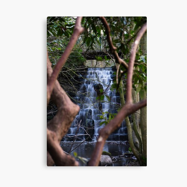 Arrowe Brook Waterfalls and Rhododendron Canvas Print