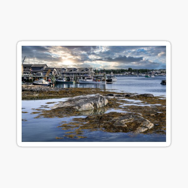 Peaceful Harbor  Sticker