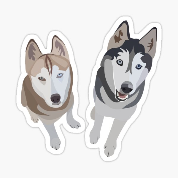 Huskies  Sticker