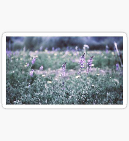 Flower meadow in vintage look Sticker