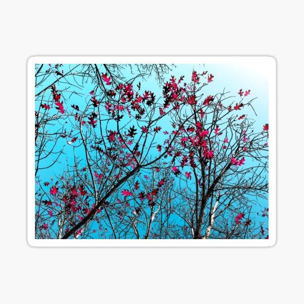 Sharon's Red Oak Sticker