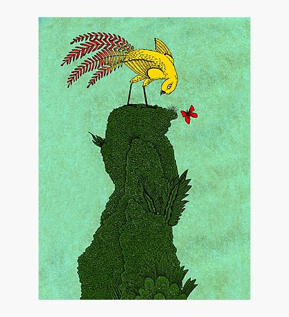 Mythical bird on Mountain top Photographic Print