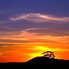 gordon sunset by fazza