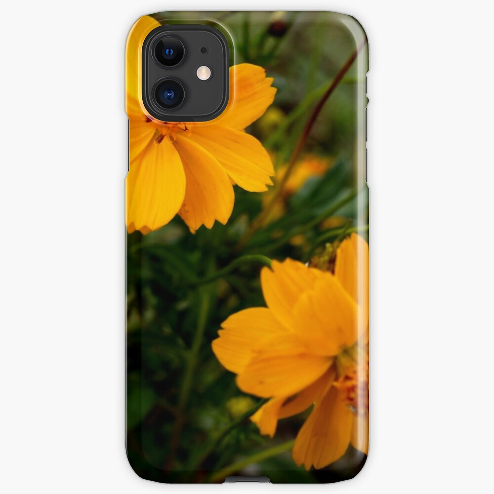 Golden Coreopsis from A Gardener's Notebook iPhone Case & Cover