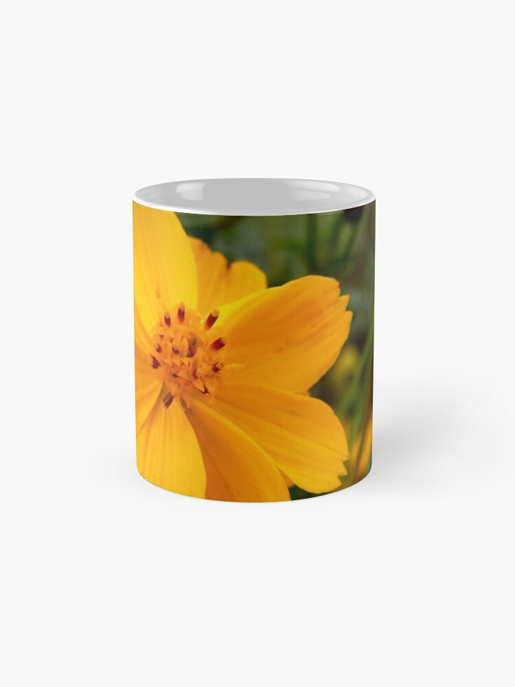 Alternate view of Golden Coreopsis from A Gardener's Notebook Mug